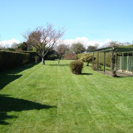 Stephen Huxtable - Gardening Services